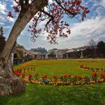 Farbenfroher Mirabellgarten - Thomas Wirnsperger @mein.salzburg.com
