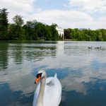 Sound of Music Tour Salzburg - Schwan Leopoldskron