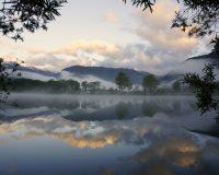Nebelstimmung am Fischteich