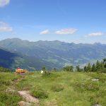Zirbenzauberweg am Graukogel