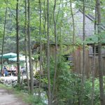 Versteckt im Wald liegt die Mühle