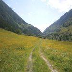 Am Weg nach Bad Fusch
