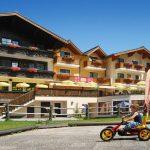 Hotel Traunstein in Abtenau