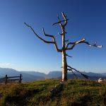 Das neue Naturkreuz am Vorgipfel der Gabel (= Kitzstein, 2.037 m)