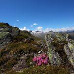 Herrliche Naturlandschaft im Nationalpark Hohe Tauern