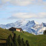 """Blick vom Ende der """"Himmelsleiter"""" zur Bichlalm, darüber der Keeskogel 2.884 m"""