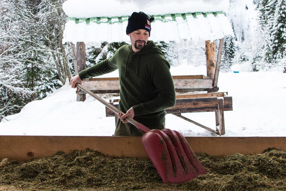 Mahlzeit f r reh und hirsch salzburgerland magazin for Weihnachtsreh beleuchtet