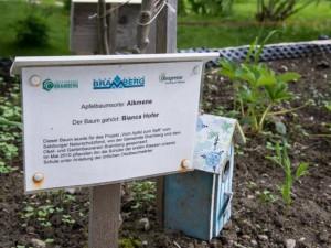 Jedes Baeumchen im Schulgarten traegt den Namen des Besitzers.