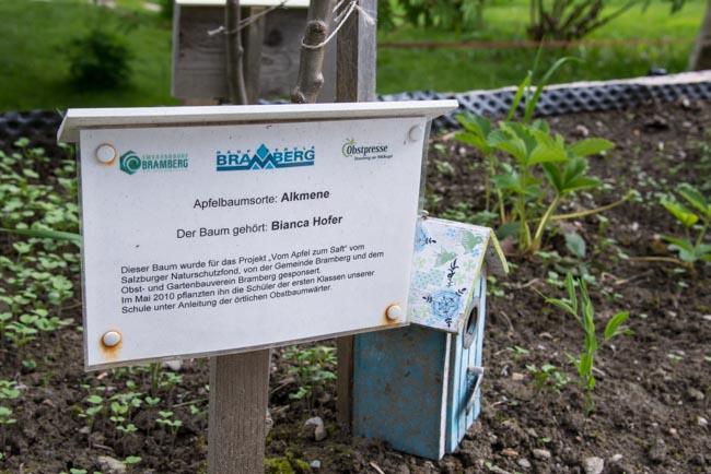 Jedes Bäumchen im Schulgarten trägt den Namen des Besitzers.