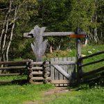 Einstieg zum Salzburger Almenweg Richtung Filzmoosalm