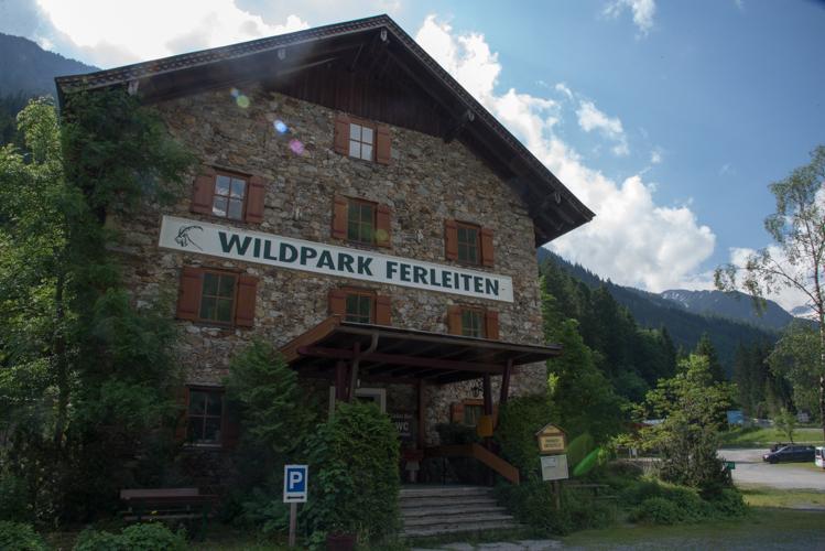 Das Steinhaus im Wildpark - hier erfahren die Mini-Ranger alles über die Wildparkbewohner.