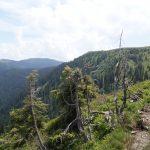 Herrliche Berglandschaft in Leogang