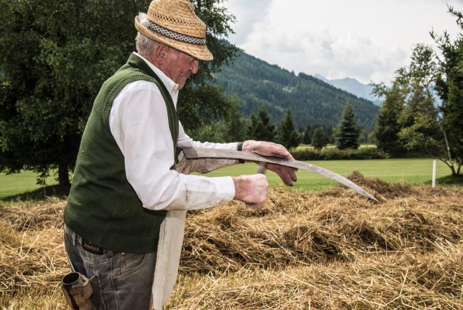 Bevor das Korn geschnitten wird sorgt Franz mit dem Wetstein für a guade Schneid.