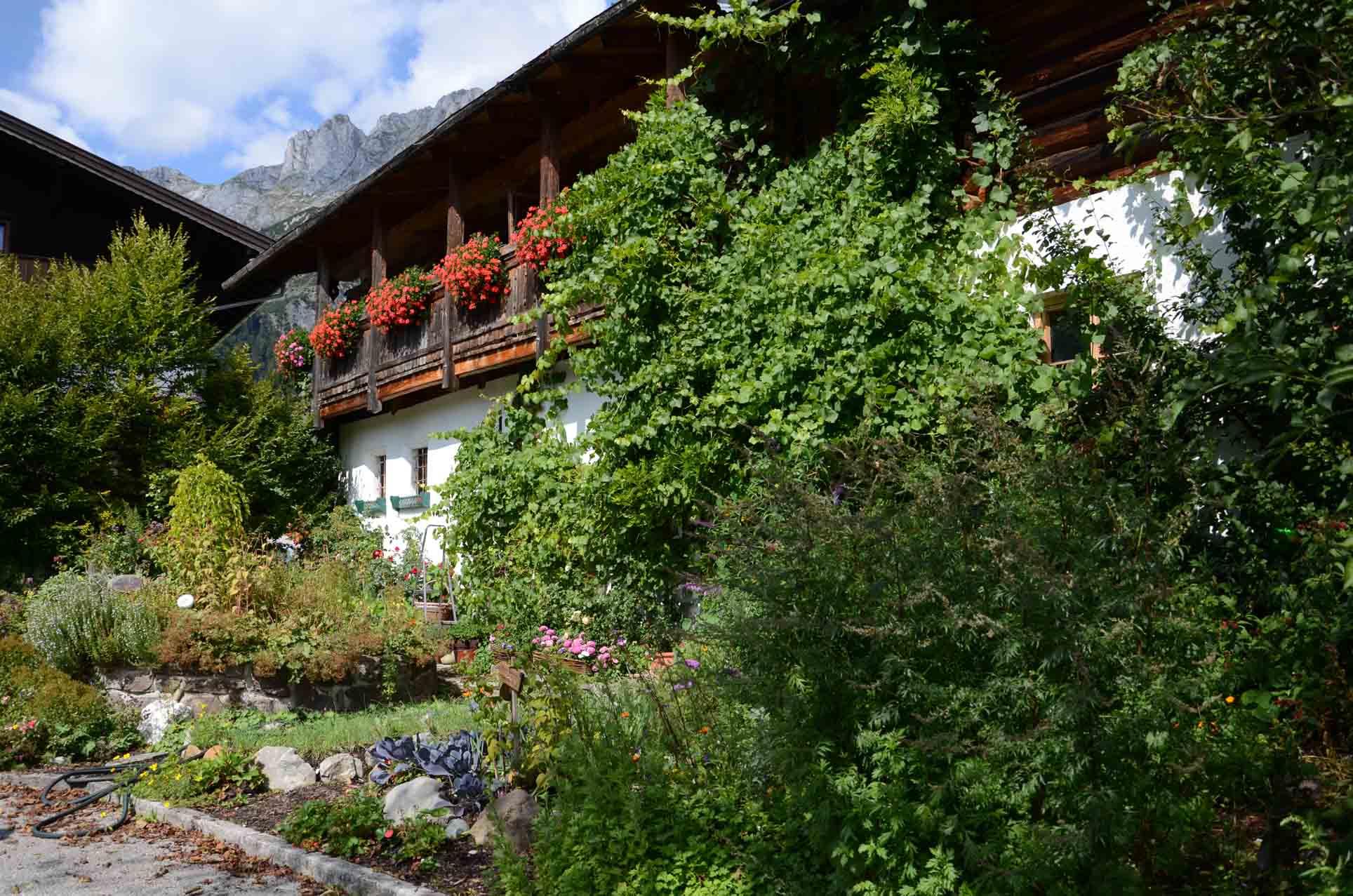 Altes Bauernhaus Wildaugut