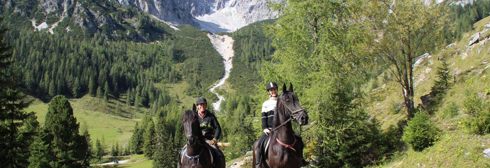 Bergewandern mit Pferd am Fuße der Bischofsmütze