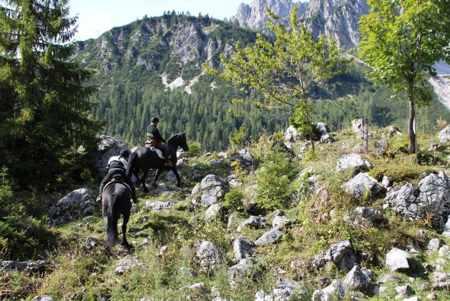 Wie die Bergziegen: Zenne und Rosilda in Aktion