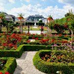 Der Rosengarten in voller Pracht© Stadtgemeinde Salzburg, J. Killer.