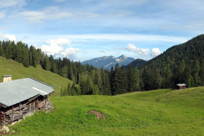 Panorama Scheffsnother Alm