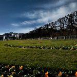 Farbenprächtiger Sommer im Mirabellgarten. © Zimtapfel
