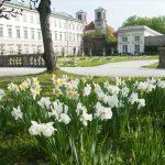 Der Frühling ist das! © Stadtgemeinde Salzburg, J. Killer