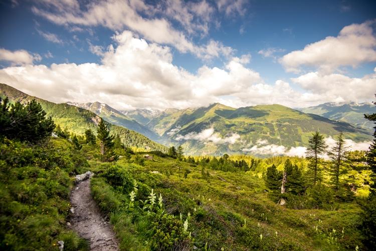 Wanderweg am Graukogel Gasteinertal