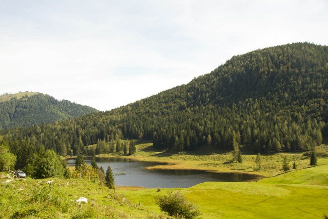 Seewaldsee_Herbstspaziergang7