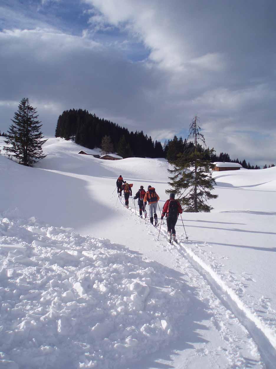 Schnee-Schuh-Wandern