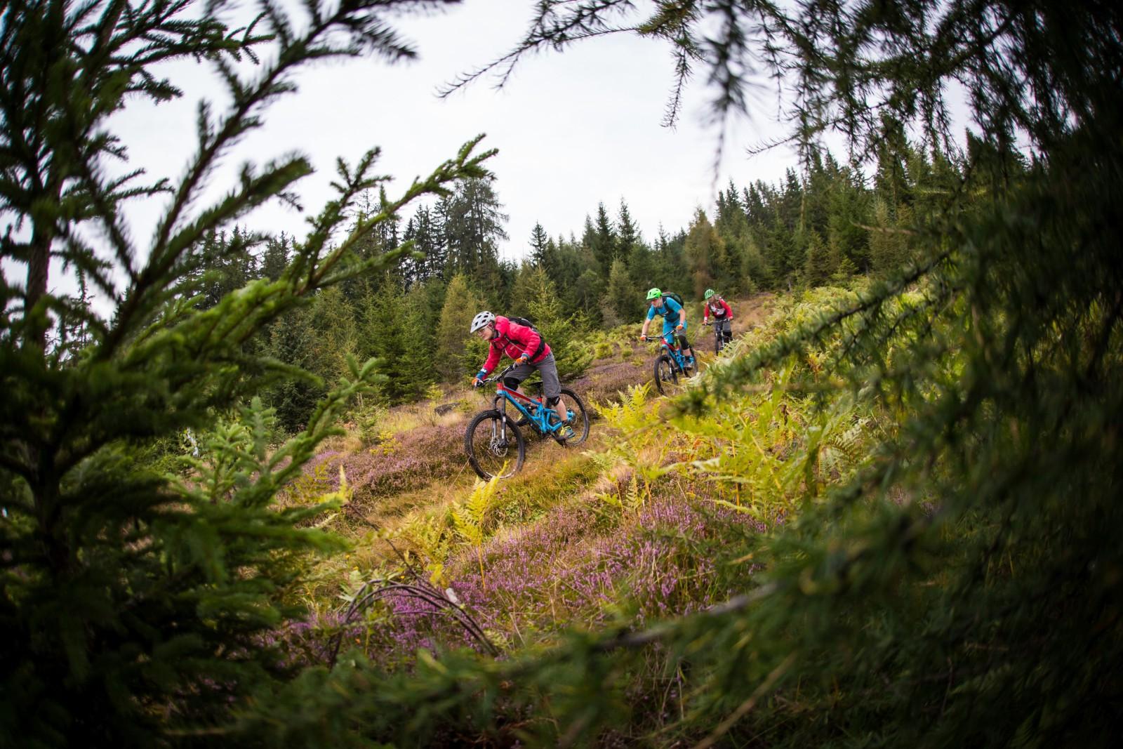 Bikepark: Singletrail mit Blick nach Leogang und Saalfelden