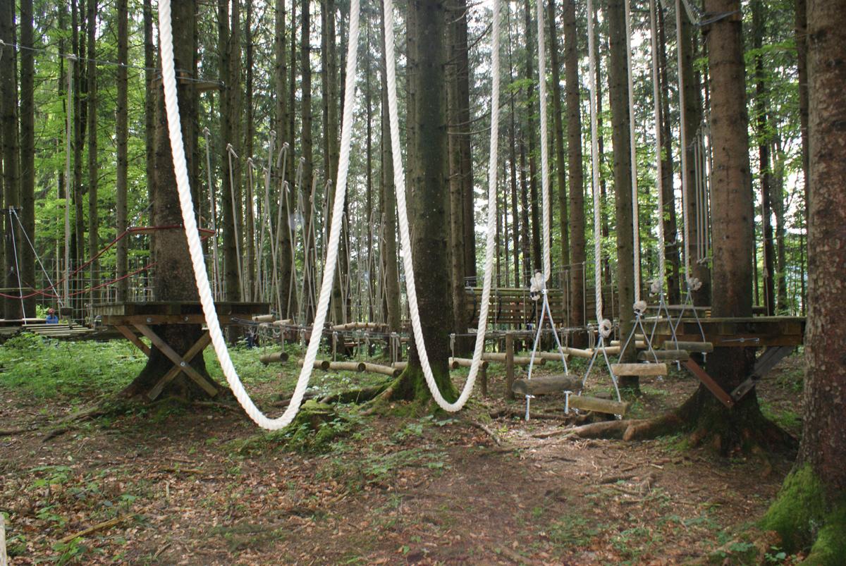Klettergurt Tree Austria : Waldkletterweg faistenau salzburgerland magazin