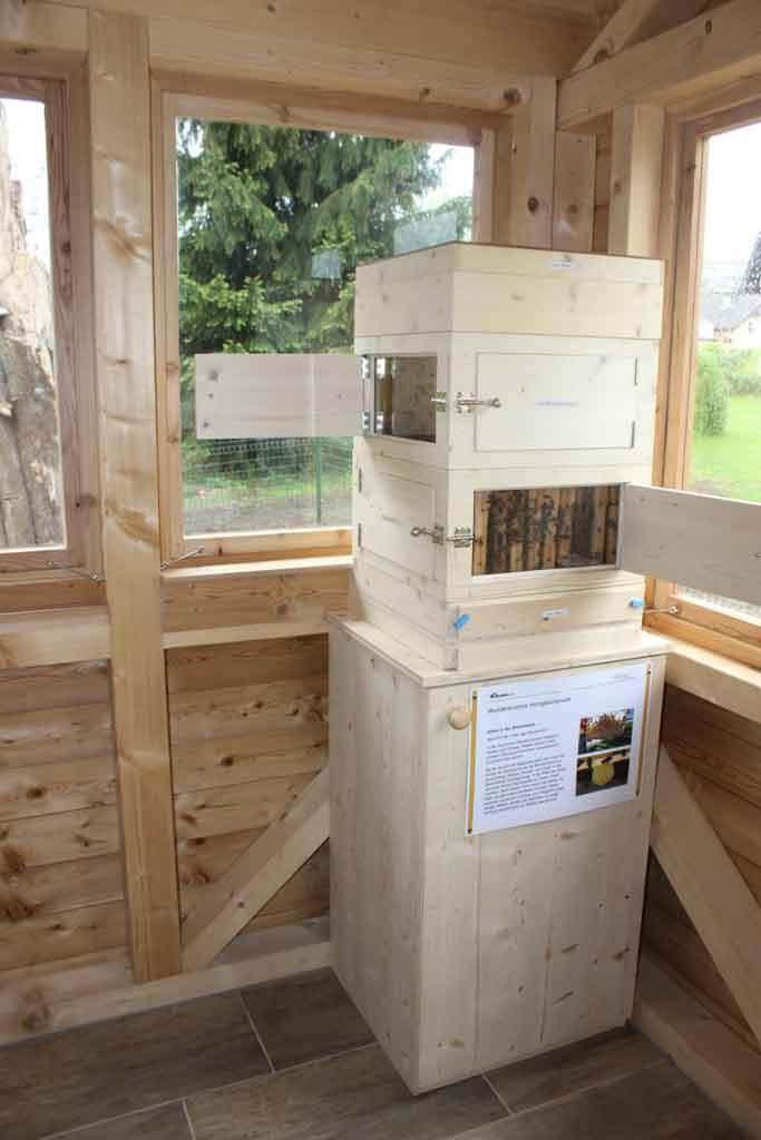 Bienenschau-Kasten