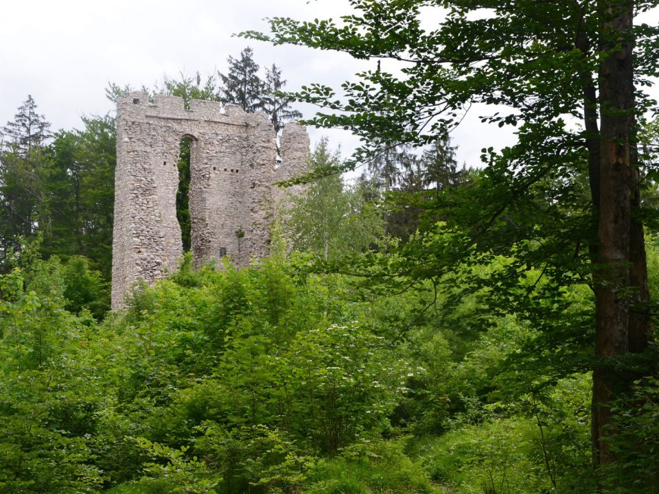 Ruine Thürndl in Hallein