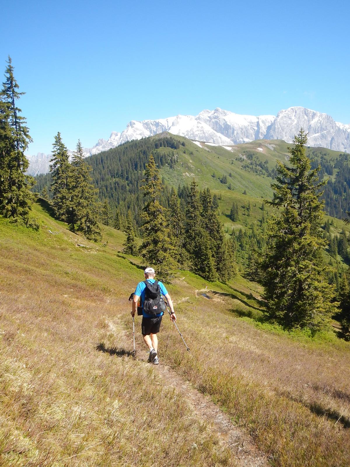 Ob man Nordic Walking-Stecken zum Trailrunning verwendet, bleibt jedem selbst überlassen. Für manchen mag es eine Hilfe sein, vor allem bergauf.