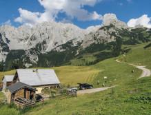 Salzburger Land_Sarah Scharl-90