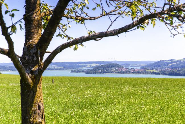 BioParadies_SalzburgerLand_Seeham