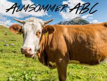 Weidende Kuh auf saftiger Almwiese