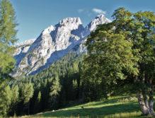 Tennengebirge von Madegg