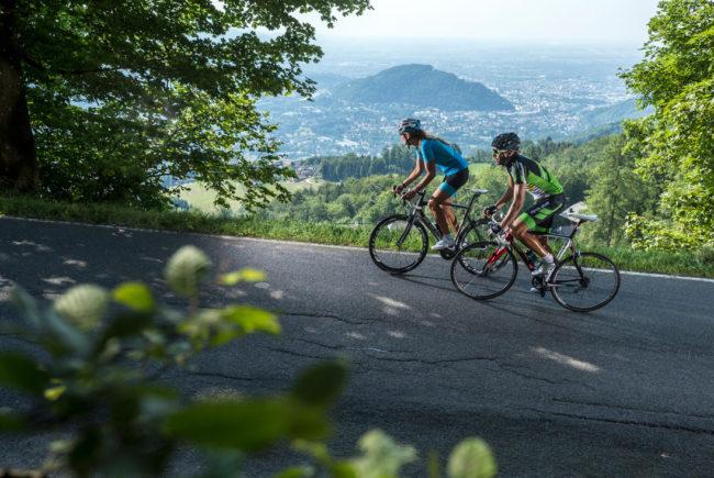 Rennradfahrer am Gaisberg