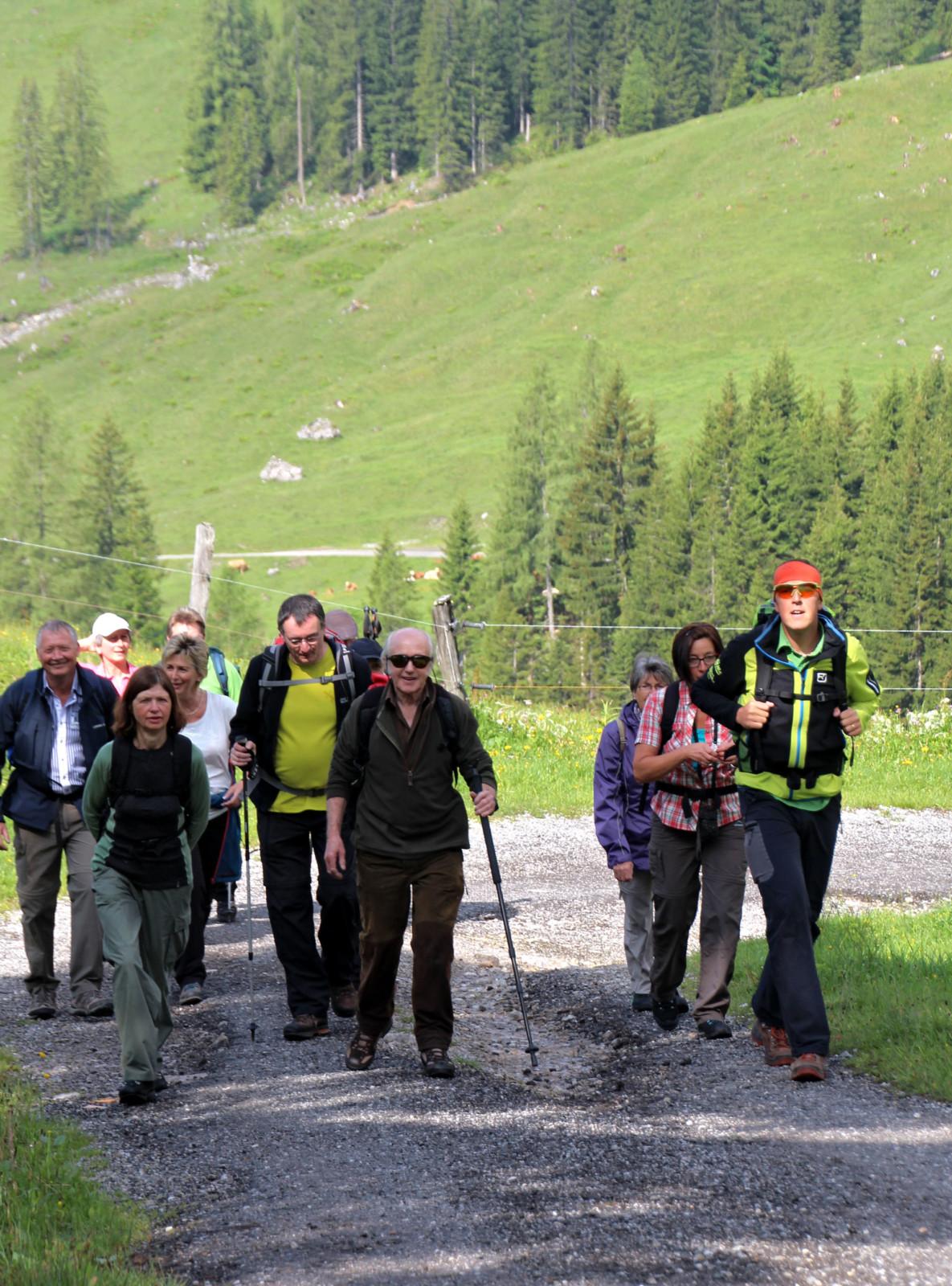 Salzburgs Bergwanderführer sind häufig Spezialisten für Almblumen