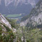 Blick Stegenwald
