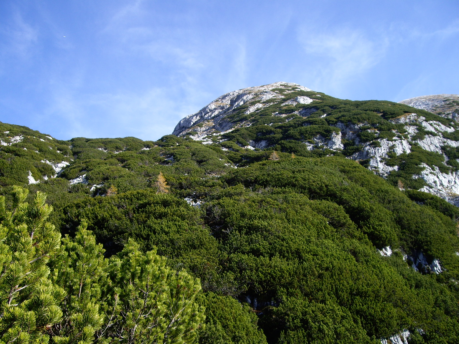 Weite des Plateaus mit vielen Dolinen und Klüften