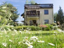 gelbes Haus mit Blumenwiese