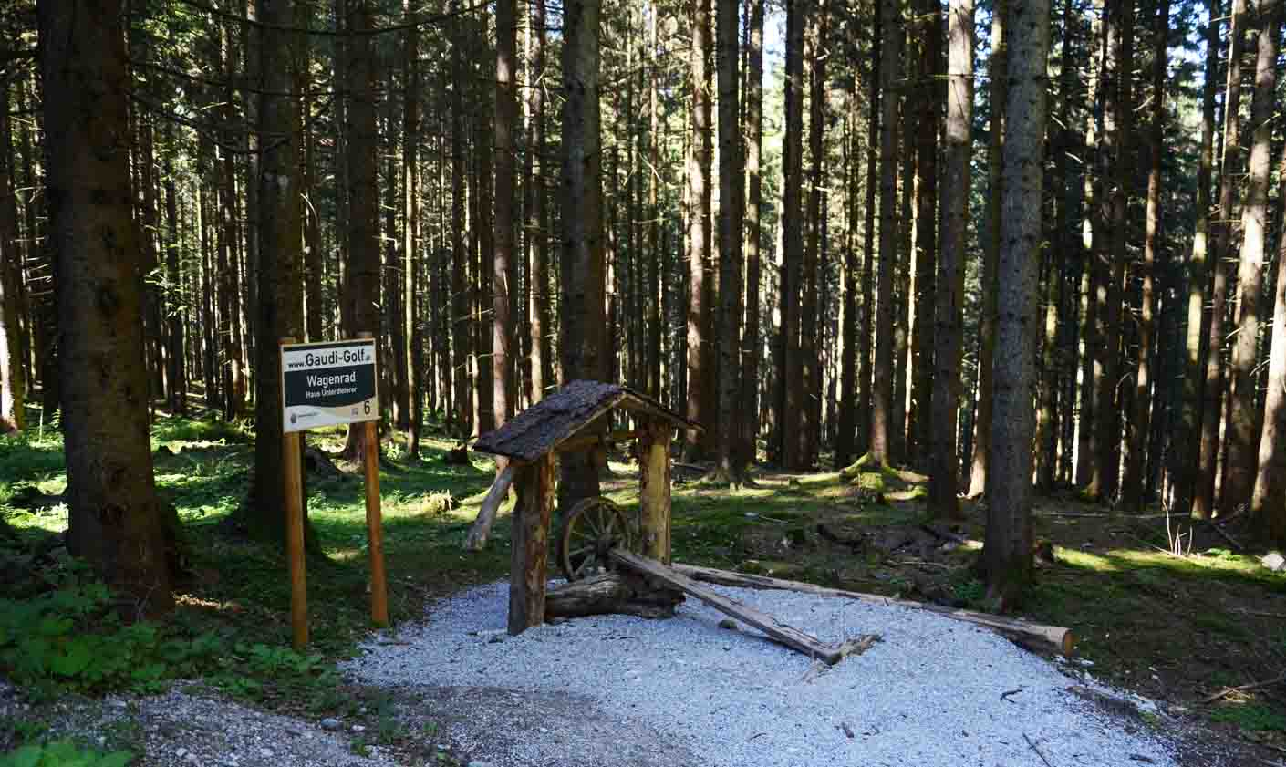 Station im Wald
