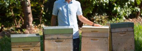 Bio-Imkerei Bienenlieb