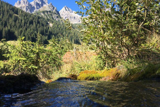 Wasser der Meeräuglquelle vor der Bergwelt in Filzmoos