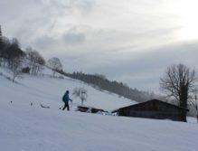Schneeschuhwandern in Filzmoos