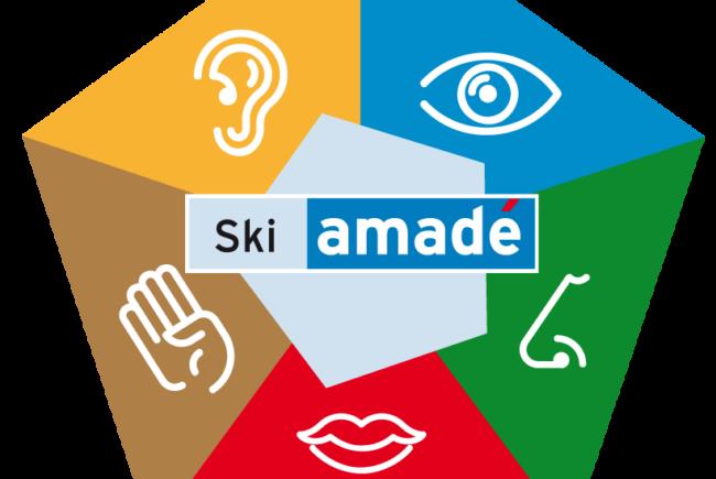 ski-amade-5sinne-icon