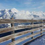 sonnenbeschienener Holzzaun vor winterlichem Bergpanorama