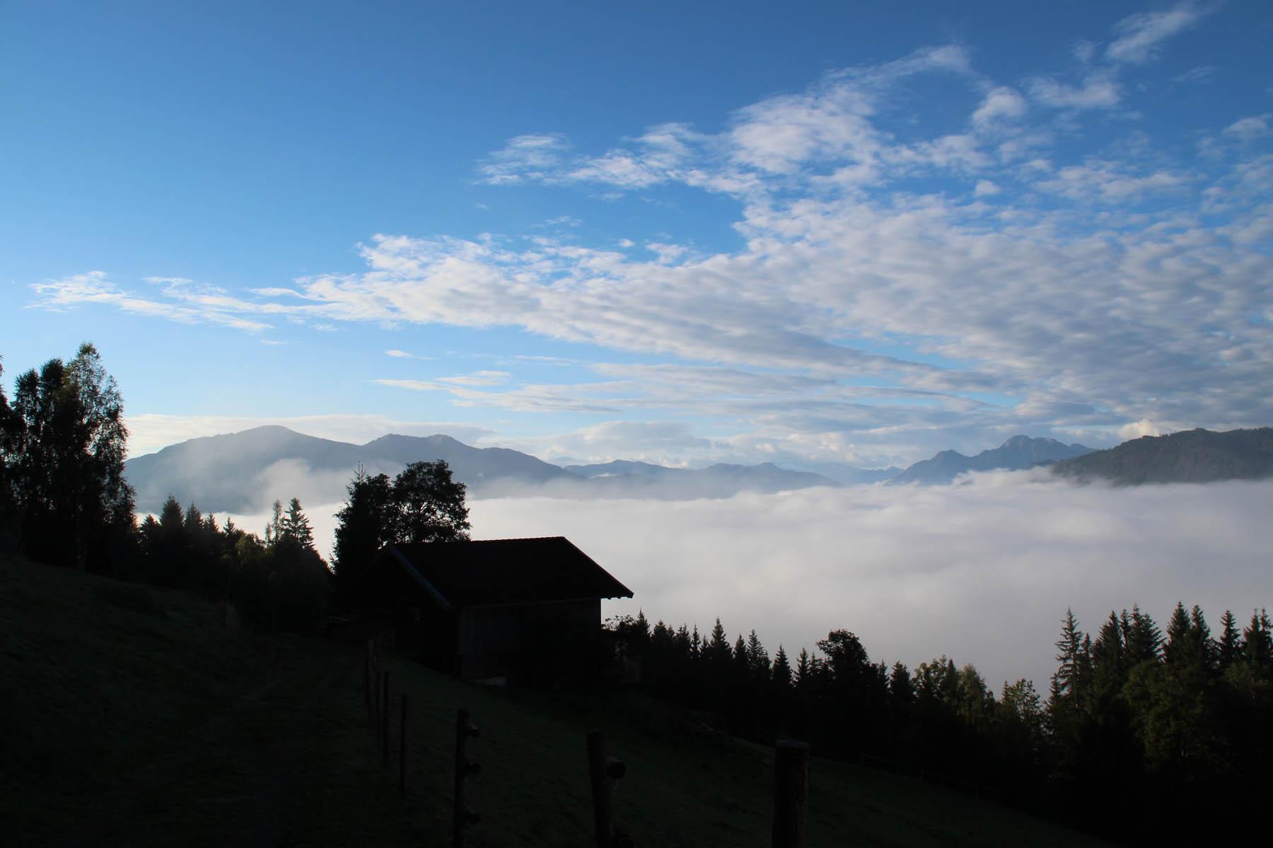 Schattiger Aufstieg am frühen Morgen von der Mahdegg Alm aus