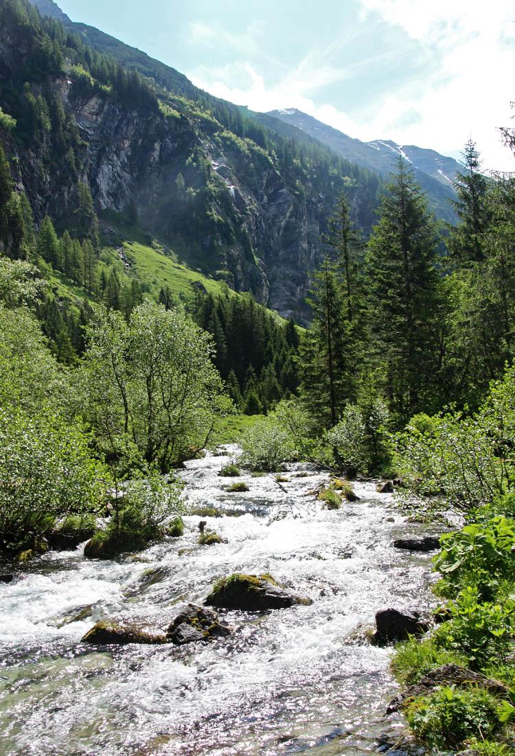 Wenn der Weg flacher wird, kommt man ins Schödertal und der Bach verschwindet plötzlich unterirdisch.