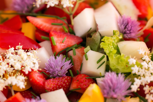 Holunderblüten im Salat